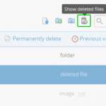 How To Recover a Deleted File or an Older Version of a File in Dropbox